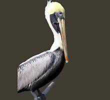 Pelican T T-Shirt