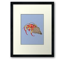 hermit crab in blue Framed Print