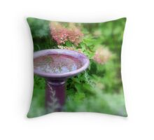 Small Reflection... Throw Pillow