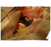 Ballet shoe Poster