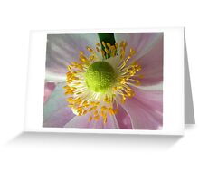 japonese anemone Greeting Card