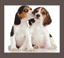 Puppies Beagles! Kids Clothes