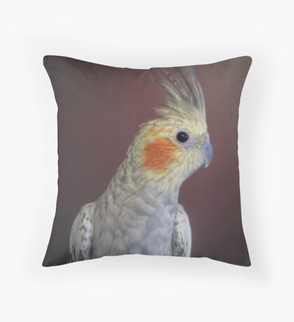 """Jimmy"" Throw Pillow"
