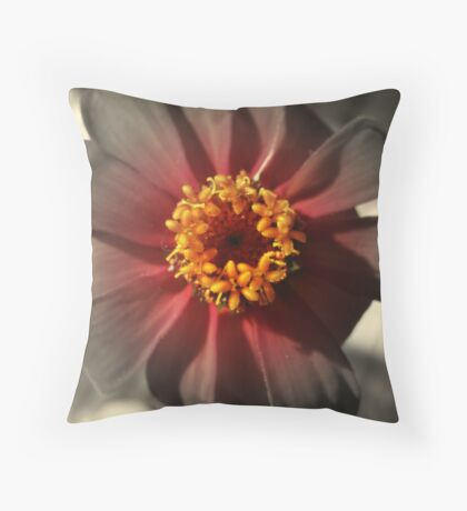 Blooming fade Throw Pillow