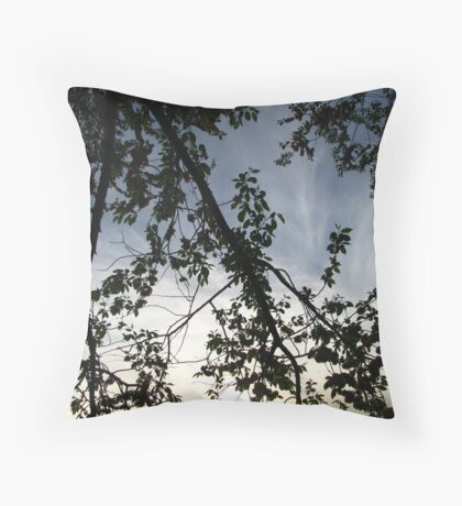 Ribbons of light Throw Pillow