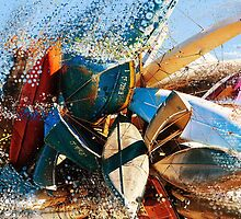 Mussels by Juan Torrero