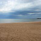 Michigan beach before the storm by Ed Michalski