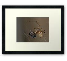 nature's fallen soldier Framed Print