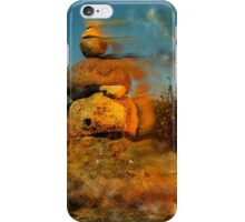 Desert Storm iPhone Case/Skin