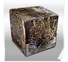 Leopard Cube Poster