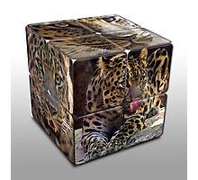 Leopard Cube Photographic Print