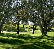 Gums & Grass by LeeoPhotography