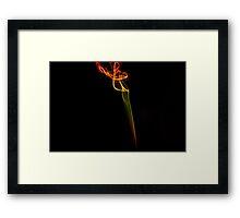 Neon Lights Framed Print