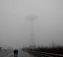 foggy coney by francesm