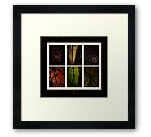 Hidden World Framed Print