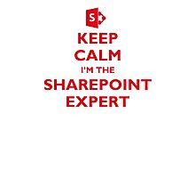 Keep Calm I'm the SharePoint Expert Photographic Print