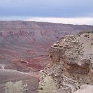 grand canyon by Sheila McCrea