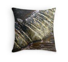Golden Falls Throw Pillow