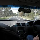 Back Seat Driver! No Photographer! by TracyD