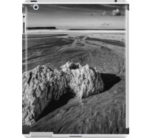 White Park Bay Exposed iPad Case/Skin