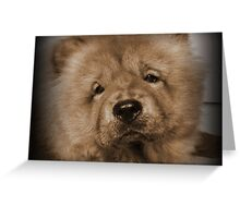 My Little Teddybear Greeting Card