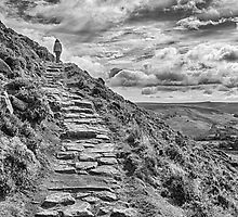 Path to the sky by DaleReynolds