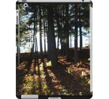 Trees Shining iPad Case/Skin