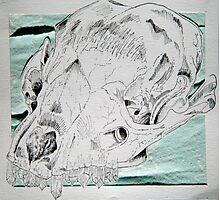 Crystals & Skulls Photographic Print
