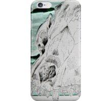 Crystals & Skulls iPhone Case/Skin