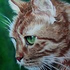 Ginger cat by Valerie Simms