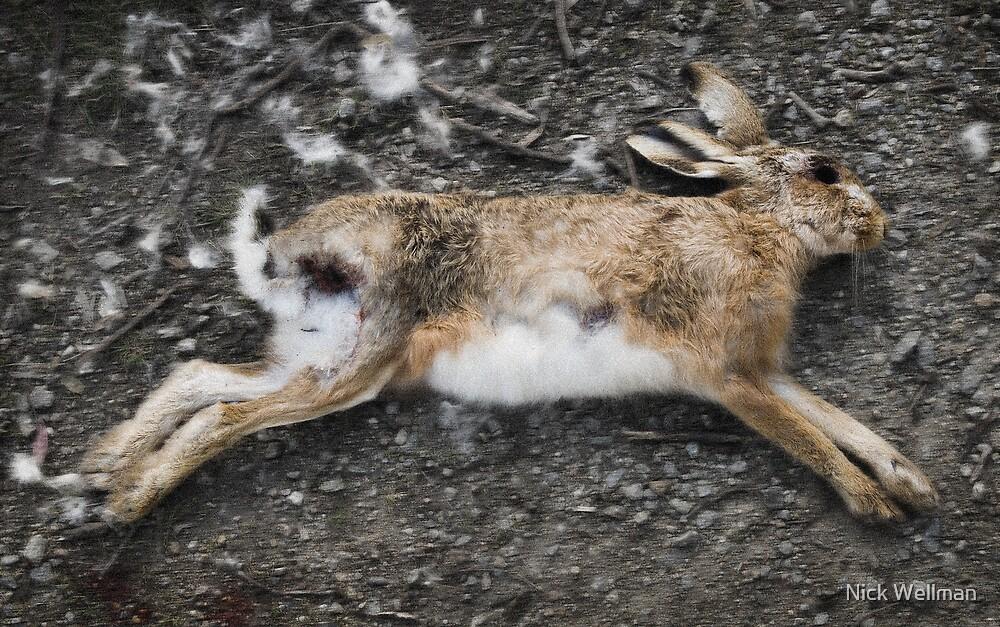 Dead Rabbit by wellman