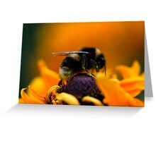 Buzz VII Greeting Card