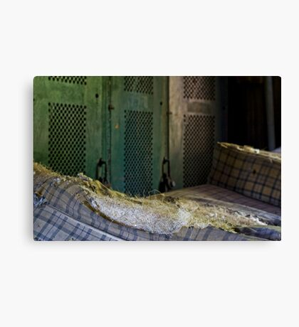 Nesting Material Canvas Print