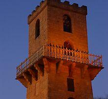 Centenary Tower  by Biggzie