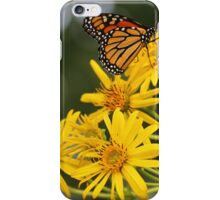 Summer Butterfly iPhone Case/Skin