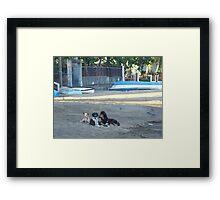 Beach Bums 2 Framed Print
