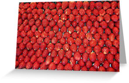 Deep red by Giulia Sermoneta