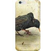 Oh No You DIDN'T!! iPhone Case/Skin