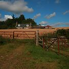 Farm Gates by Suzanne Forbes-Murray