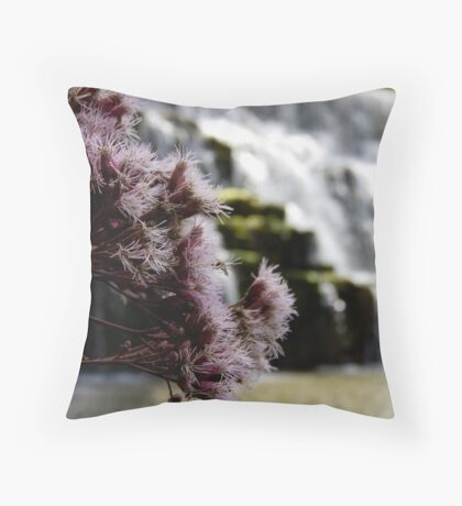 Beauty in the distance Throw Pillow
