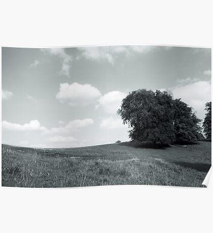Dyrham Park - Landscape #1 Poster
