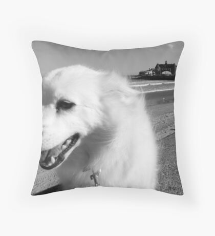 Sylvie the Wonder Dog Pauses at the Beach, in Black and White Throw Pillow