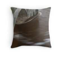 Deluge 2 Throw Pillow