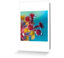 Sparkle. Greeting Card
