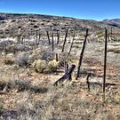 Corral at Cave Creek Trailhead by Roger Passman