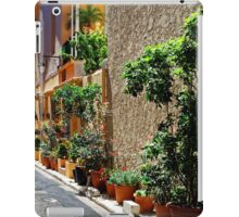 Are we in Provence Yet? Yes We Are! iPad Case/Skin