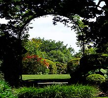 #506    Formal Garden Through An Arch by MyInnereyeMike