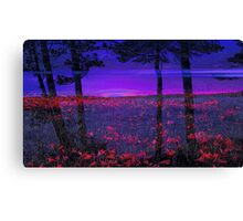 Blue Sunset-Available In Art Prints-Mugs,Cases,Duvets,T Shirts,Stickers,etc Canvas Print