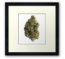Larry OG Framed Print