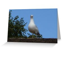 Ruler of the Land  Greeting Card